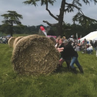 Berkshire Country Fayre YFC Show Classes 2016