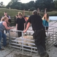 Bradfield and District Young Farmers Club Report