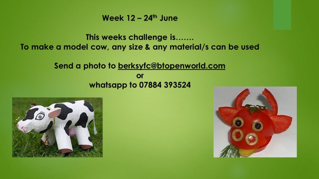 Wednesday 24th June County Virtual Challenge